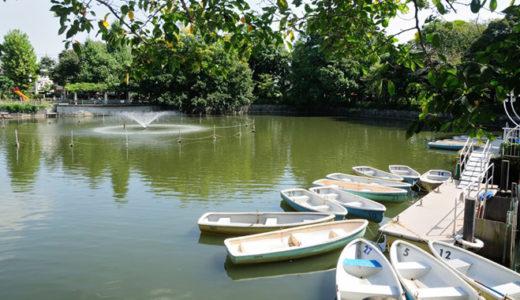 ポニーにボート、モルモットまで!?目黒区の碑文谷公園が子供に人気の訳